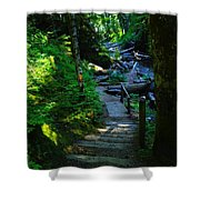 The Path To Iron Creek  Shower Curtain