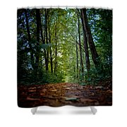 The Pathway In The Forest Shower Curtain