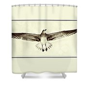 The Perfect Wing Shower Curtain