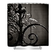 The Point Shower Curtain by Jessica Brawley