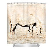 The Pony Shower Curtain