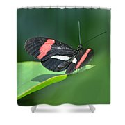 The Postman Takes Flight Shower Curtain