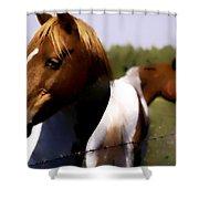 The Prairie Horses Shower Curtain