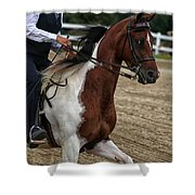 The Prance Shower Curtain