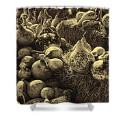 The Produce Of The Earth In Sepia Shower Curtain