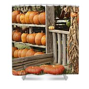 The Pumpkin Shack At Isom's Orchard Shower Curtain