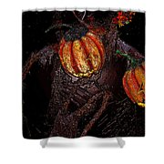 The Pumpkins In The Field Shower Curtain