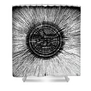 The Pupil Of The Eye Shower Curtain