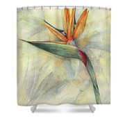 The Queen Of Paradise Shower Curtain