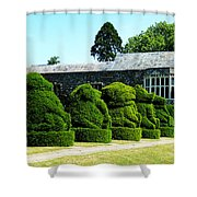 The Queens Beasts Shower Curtain