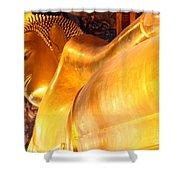 The Reclining Buddha Shower Curtain