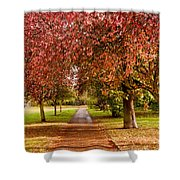 The Red Path Shower Curtain