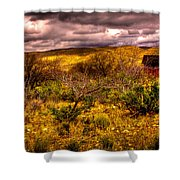 The Red Shed At Red Rock Canyon Shower Curtain by David Patterson