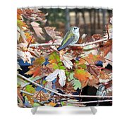 The Resting Tree Shower Curtain