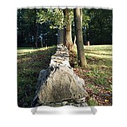 The Road Leading Home Shower Curtain