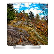 The Rocks Above Eagle Bay Shower Curtain