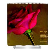 The Rose And Thorn Shower Curtain
