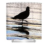 The Royal Society For Protection Of Birds Shower Curtain