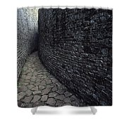 The Ruins Of Great Zimbabwe Were Built Shower Curtain