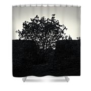 The Ruins Of The Castle Of Ali Pasha In Bw Shower Curtain