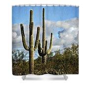 The Saguaros  Shower Curtain