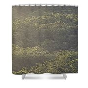 The Schlerophyll Forest Canopy Shower Curtain