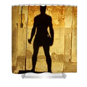 The Shadow Of The Statue Shower Curtain