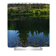 The Shadows Of Trees  Shower Curtain