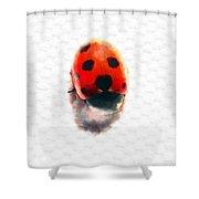 The Shy Ladybug Shower Curtain
