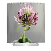 The Simple Things Shower Curtain