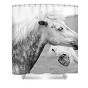 The Smiling Horse Shower Curtain