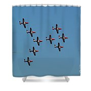The Snowbirds Shower Curtain