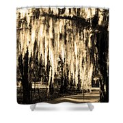 The Spanish Moss Shower Curtain