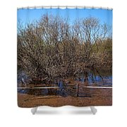 The Spring Flood Shower Curtain
