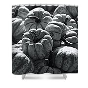 The Squash Harvest In Black And White Shower Curtain
