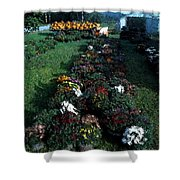 The Stand In Autumn Shower Curtain by Wayne King