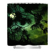 The Sun Through Clouds And Branches  Shower Curtain