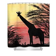 The Tall One Shower Curtain