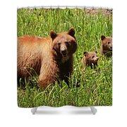 The Three Bears Shower Curtain