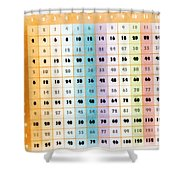 The Times Table Shower Curtain
