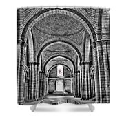 The Tombs At Fontevraud Abbey   France Shower Curtain