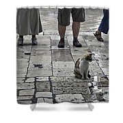 The Tourists Shower Curtain