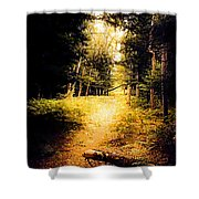 The Trail Shower Curtain