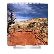 The Trail Ahead Shower Curtain