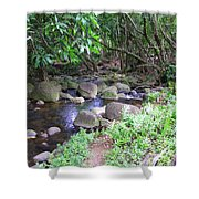 The Trail By The Creek Shower Curtain