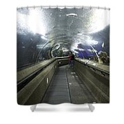 The Travelator At The Underwater World In Sentosa In Singapore Shower Curtain
