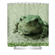 The Tree Frog Shower Curtain