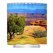 The Tree The Canyon And The Mountains Shower Curtain