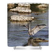 The Water Dance V4 Shower Curtain
