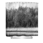 The Western Shore Shower Curtain